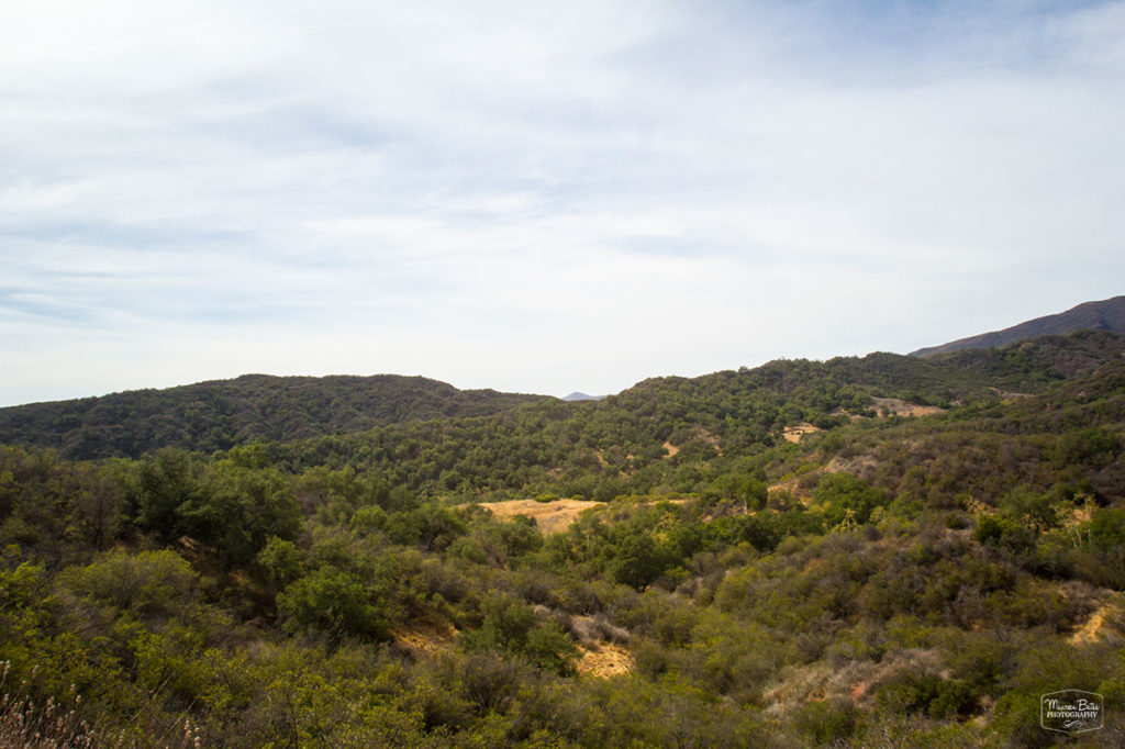 lookout_point_2_mbphoto